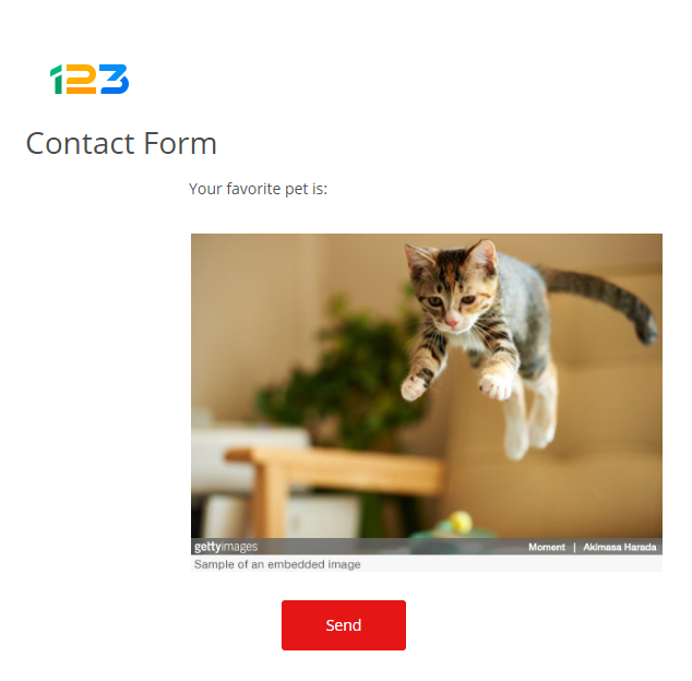 123FormBuilder how to insert clickable images in form