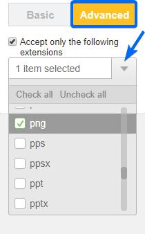 File Upload Extensions - WP Form Builder Plugin