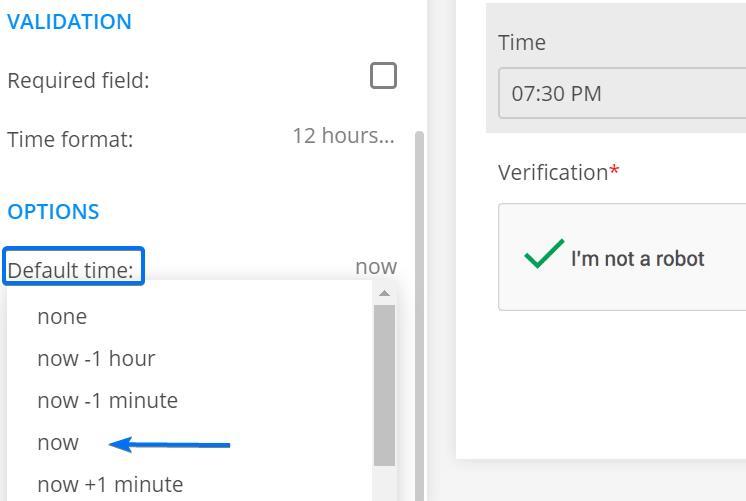 123FormBuilder default value time display for field