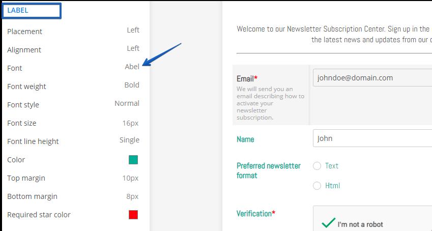 Change Form Text Font