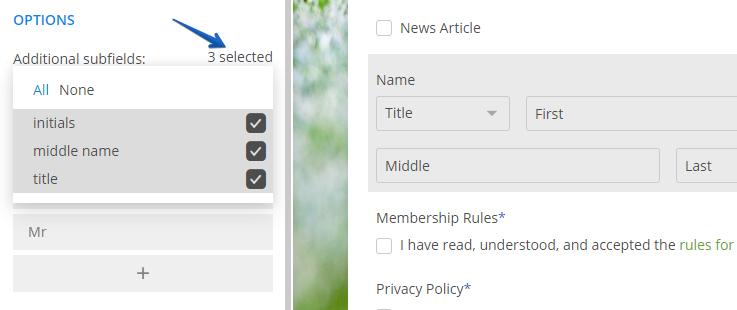 customize name subfields